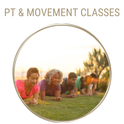 Auckland Physiotherapy Corporate Personal Training